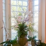 avg-floral-arrangements-041