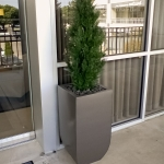 avg-trees-plants-pots-026