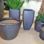 avg-trees-plants-pots-072