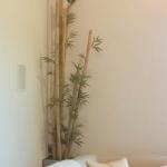 avg-trees-plants-pots-098