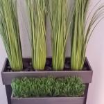 avg-trees-plants-pots-106