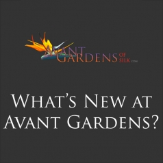 What's New at Avant Gardens?
